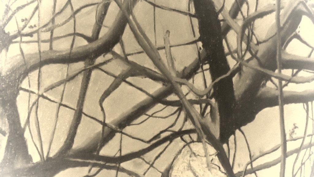 Salvezza - Uno splendido quadro - Rivelismo Italiano di Yvonne Gandini